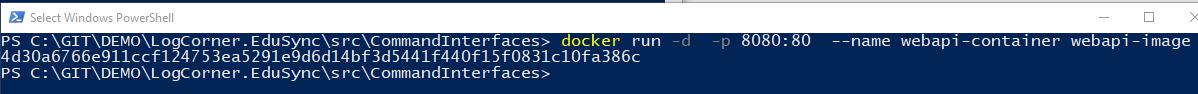 runcontainerwebapi
